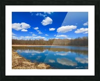 Pond Reflections Picture Frame print
