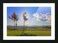 Jericho Meadow Picture Frame print