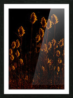 Prairie on Fire Picture Frame print