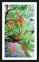 Rasta Leaves Picture Frame print