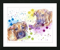 2 Colorful Dogs Brindle - Portrait of Emma and Louis Picture Frame print