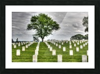 Cemetery Memorial Flags Picture Frame print