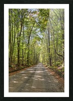 Road Less Traveled Picture Frame print