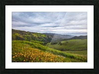 California is home Picture Frame print