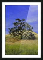 LoneMan Picture Frame print