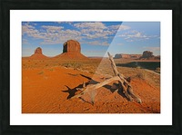 Witness of Time Picture Frame print