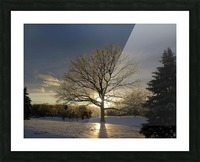 Winter Oak Picture Frame print