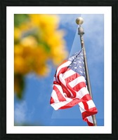 United States Flag Picture Frame print