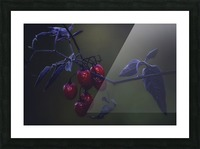 Nightshade Picture Frame print
