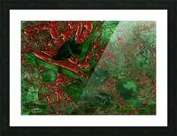 C33DC36B 6E99 4903 AC4E 5B312F59DB22 Picture Frame print