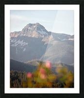 Cowboy Picture Frame print
