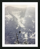 Snowy Picture Frame print