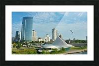 Morning Flight Picture Frame print