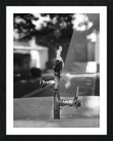 City Park Faucet Picture Frame print