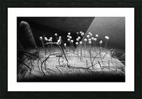 Pincushion Picture Frame print