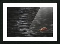 Aqueous Autumn  Picture Frame print