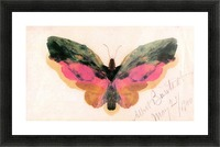 Butterfly by Bierstadt Picture Frame print