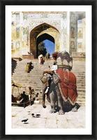 Royal Elephant Picture Frame print