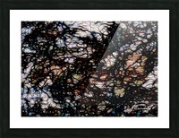 94DCA9EE 78D6 47C2 B047 105BCC5EA32D Picture Frame print