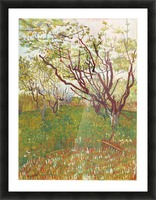 Cherry Tree by Van Gogh Picture Frame print