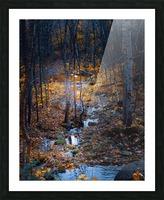 Ruisseau Picture Frame print