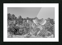 Bursting with Colour B&W Picture Frame print