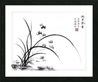 Chinese Iris Picture Frame print