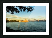 Sydney Opera House in the pre dawn light Picture Frame print