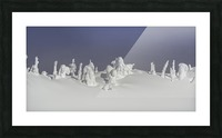 Frozen snow ghosts 1 of 1 Picture Frame print