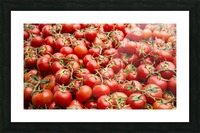 Tomatoes for sale open air market Picture Frame print