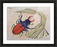 stag beetle Picture Frame print
