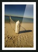 Shark Net Corner Post Perspective Brighton le Sands Australia. Picture Frame print