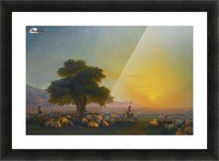 Sheeps in the sun Picture Frame print
