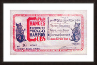 1911 Cubs Season Pass Picture Frame print