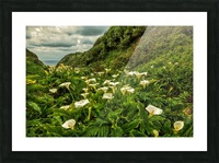 Life is Abundant Picture Frame print