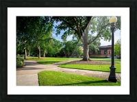 University of Georgia   Athens GA 9568 Picture Frame print