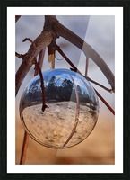 Capturer Picture Frame print