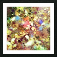 Discarded blooms Picture Frame print