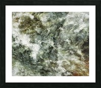 Hidden wolves Picture Frame print