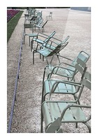 Chaises du Luxembourg   1 Picture Frame print
