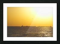 DSC_6658 Picture Frame print