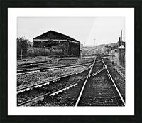 DSC_2753 Picture Frame print