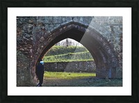 DSC_7647 Picture Frame print