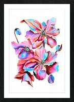 Himalaya Hot Fushia Poppies Picture Frame print