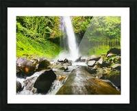 La Fortuna Waterfall  Picture Frame print