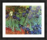 Irises by Van Gogh Picture Frame print