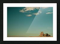 DSC_8516 Picture Frame print