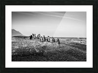 Black Tie Bonanza Picture Frame print