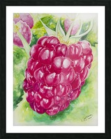 Summer Flavor: Raspberry I Picture Frame print