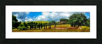 Cypress View Umbria Picture Frame print